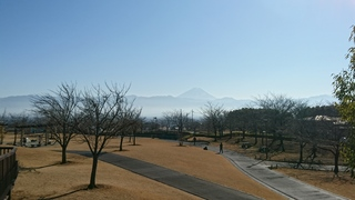 DSC_4298.JPG